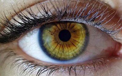 Occhio specchio dell'Anima